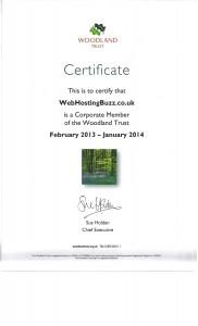 green hosting, carbon neutral hosting
